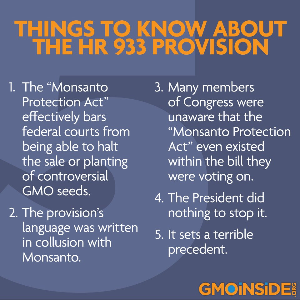 monsanto gmo s Monsanto and gmo lies revealed home subscribe (free) monsanto protection act which bans the courts from stopping the sale of monsanto's genetically-modified seeds.